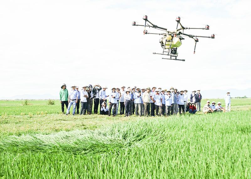 """Quảng Trị: Chuyển đổi số """"đòn bẩy"""" thúc đẩy nông nghiệp phát triển - Ảnh 5."""
