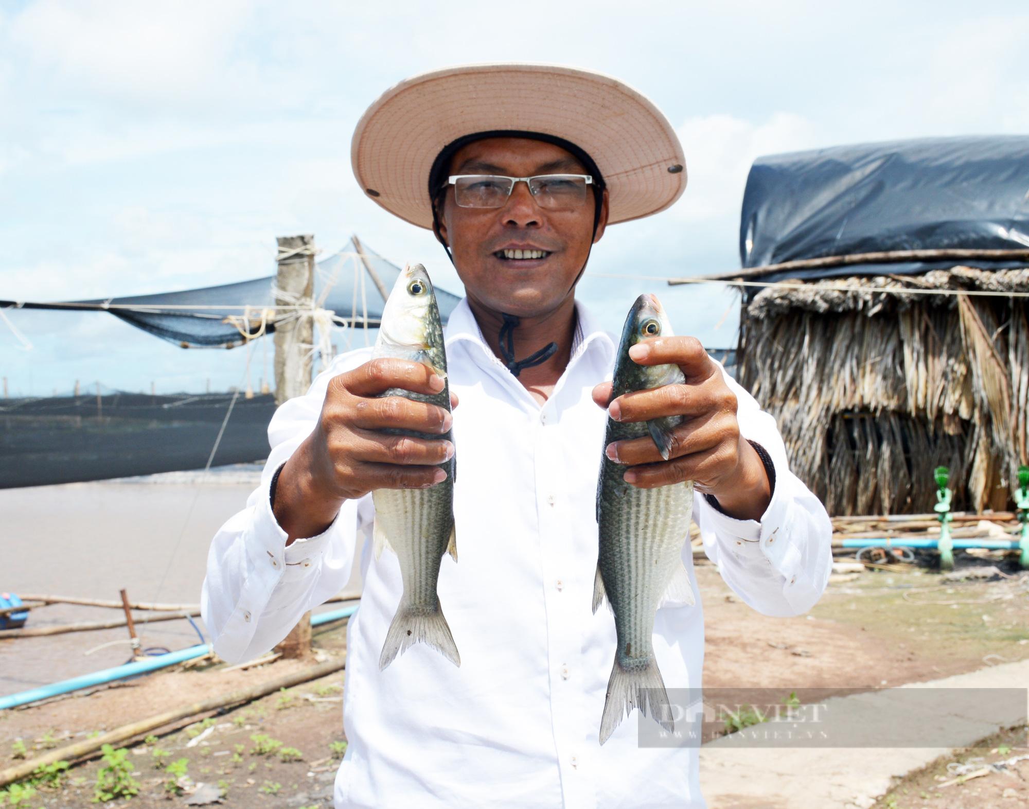 Nâng cao vai trò của Hội Nông dân Việt Nam trong việc hỗ trợ nông dân khởi nghiệp, sáng tạo - Ảnh 3.