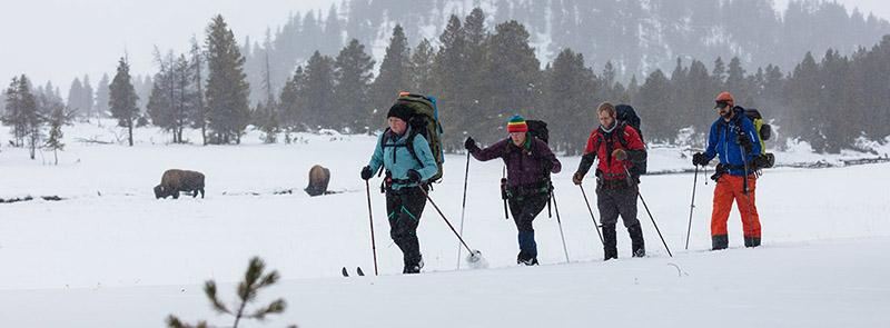 """Mỹ: Bất chấp Covid-19, Vườn Quốc gia Yellowstone vẫn lập kỷ lục đón 1 triệu khách du lịch/tháng """"trái mùa"""" - Ảnh 7."""