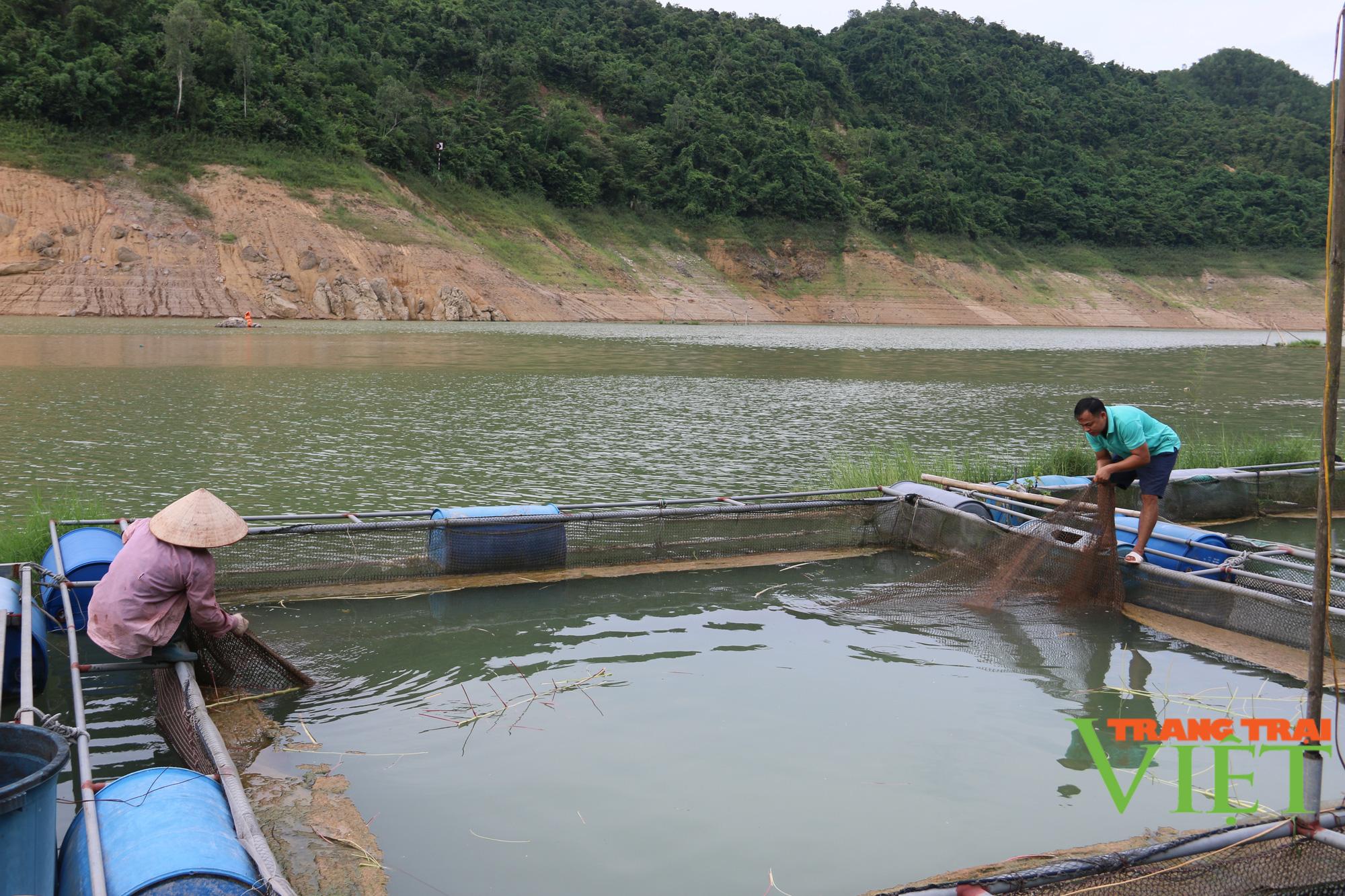 Hội Nông dân tỉnh Hoà Bình: Tập huấn, hỗ trợ hội viên phát triển kinh tế - Ảnh 2.