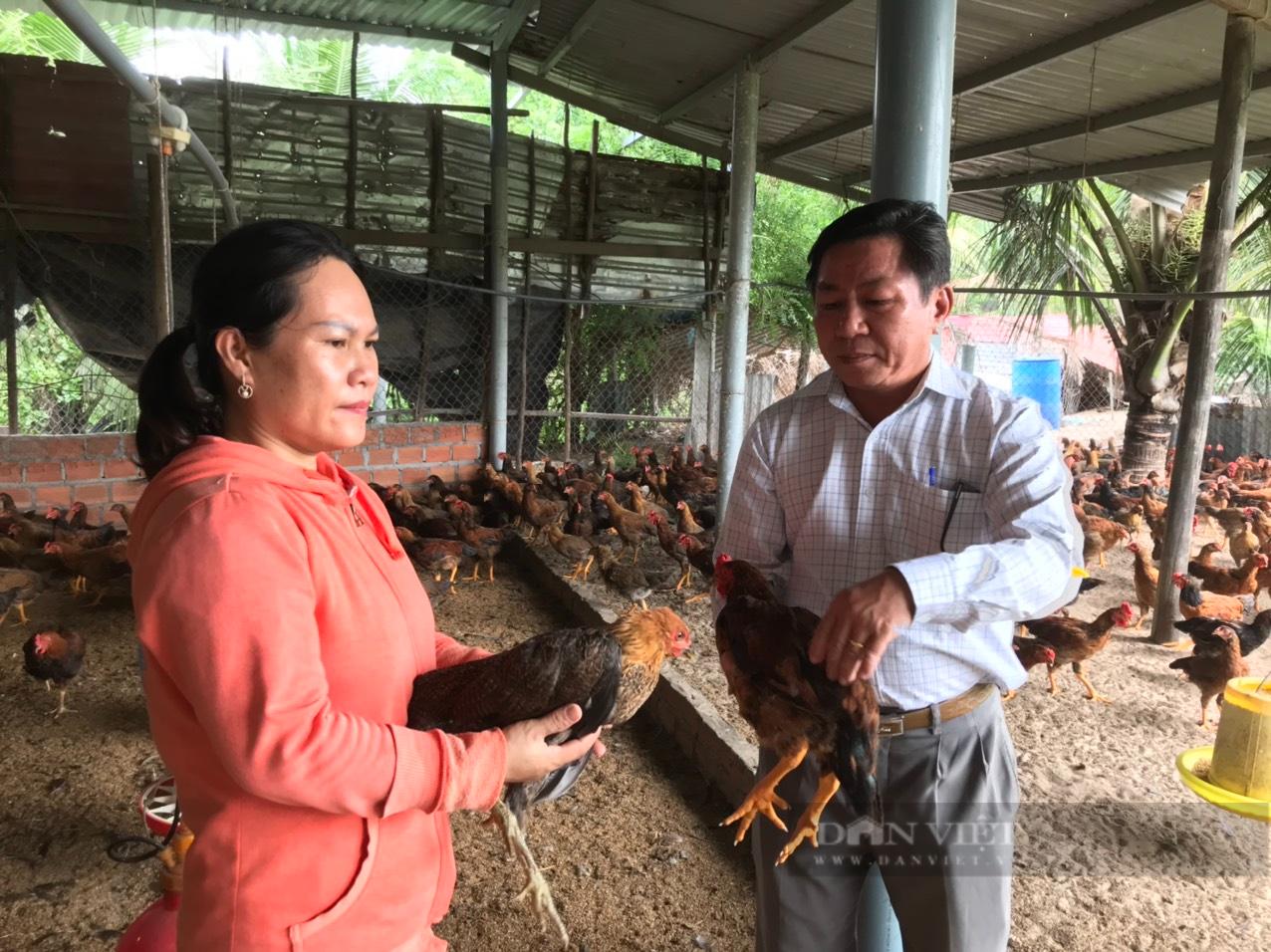 Khánh Hòa: 8X thành tỷ phú nhờ nuôi gà, nuôi heo,… - Ảnh 3.