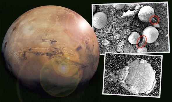 Sốc: Nấm đang phát triển trên Hành tinh Đỏ - Ảnh 1.