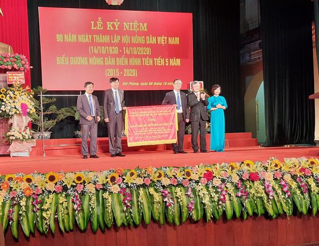 Thủ lĩnh nông dân Hải Phòng: Trình làng chương trình hành động gì để được dân bầu đại biểu HĐND - Ảnh 3.