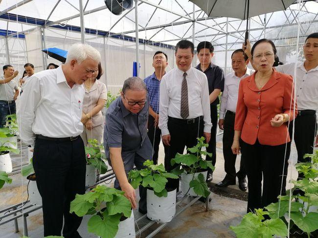 Thủ lĩnh nông dân Hải Phòng: Trình làng chương trình hành động gì để được dân bầu đại biểu HĐND - Ảnh 1.