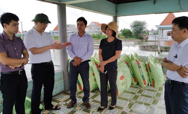 Thủ lĩnh nông dân Hải Phòng: Trình làng chương trình hành động gì để được dân bầu đại biểu HĐND - Ảnh 10.