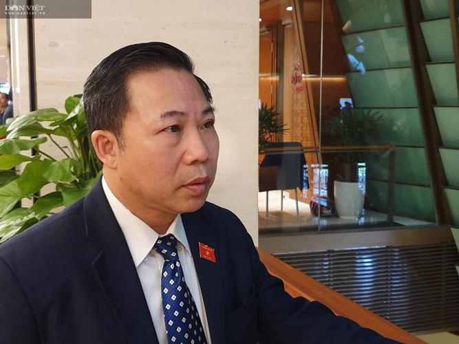Phá rừng pơ mu VQG Hoàng Liên: UBND tỉnh Lào Cai sẽ tiếp tục xử lý trách nhiệm tổ chức, cá nhân có liên quan - Ảnh 6.