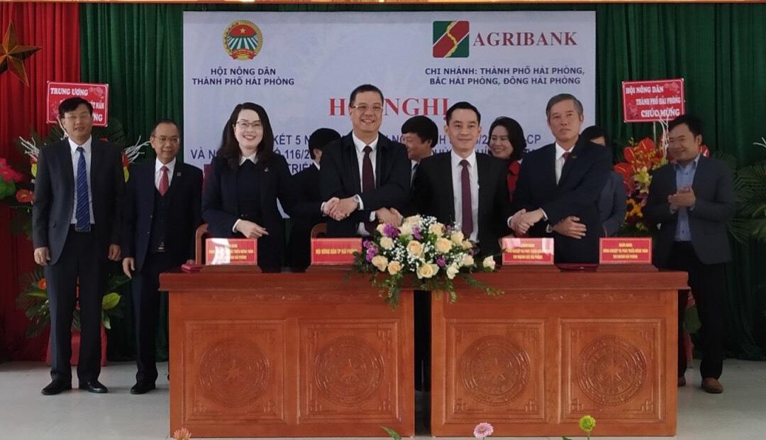 Thủ lĩnh nông dân Hải Phòng: Trình làng chương trình hành động gì để được dân bầu đại biểu HĐND - Ảnh 9.