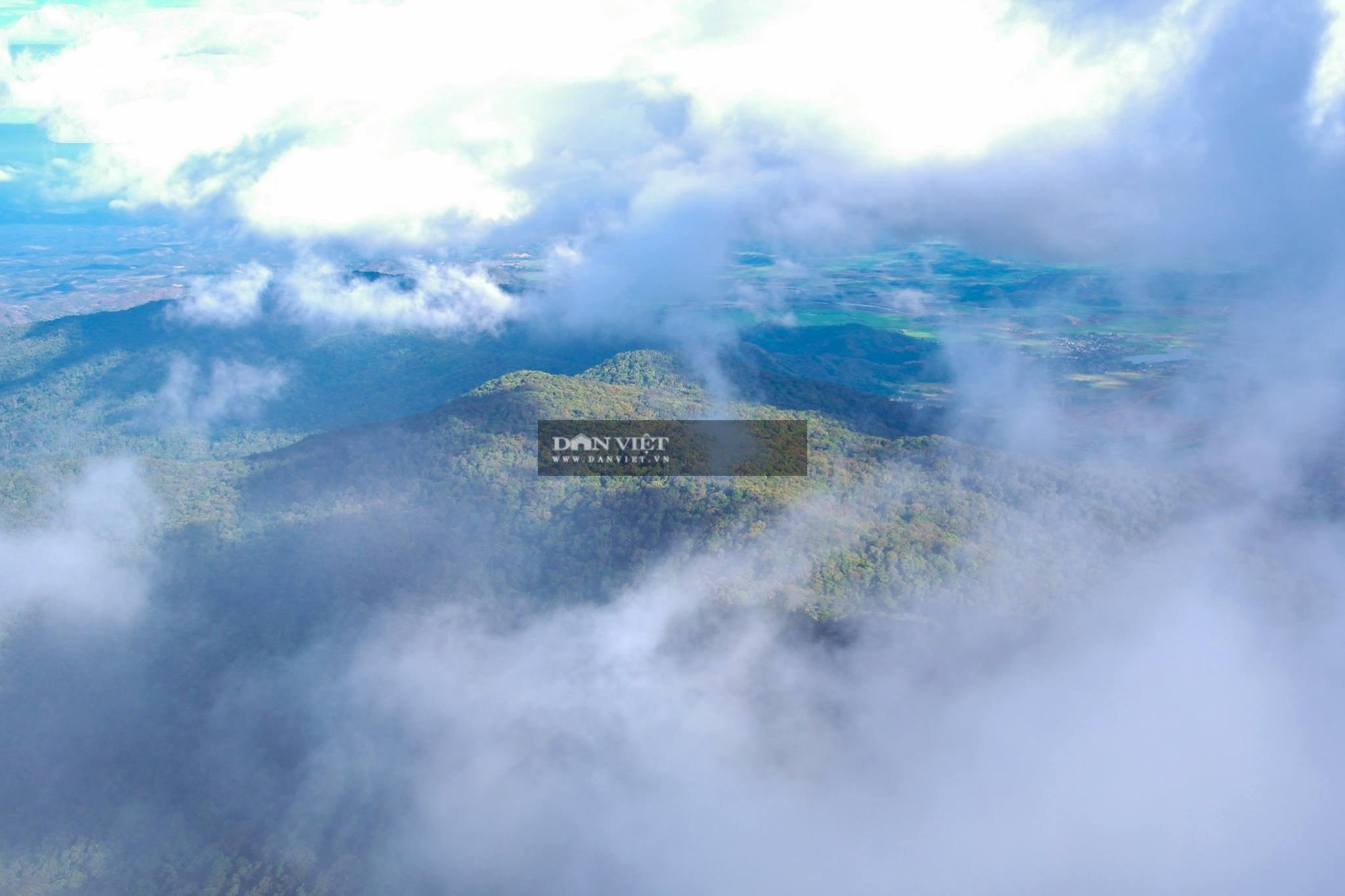 """Săn mây trên đỉnh Chư Yang Lắk – """"Vườn"""" mây tuyệt đẹp giữa Tây Nguyên - Ảnh 12."""