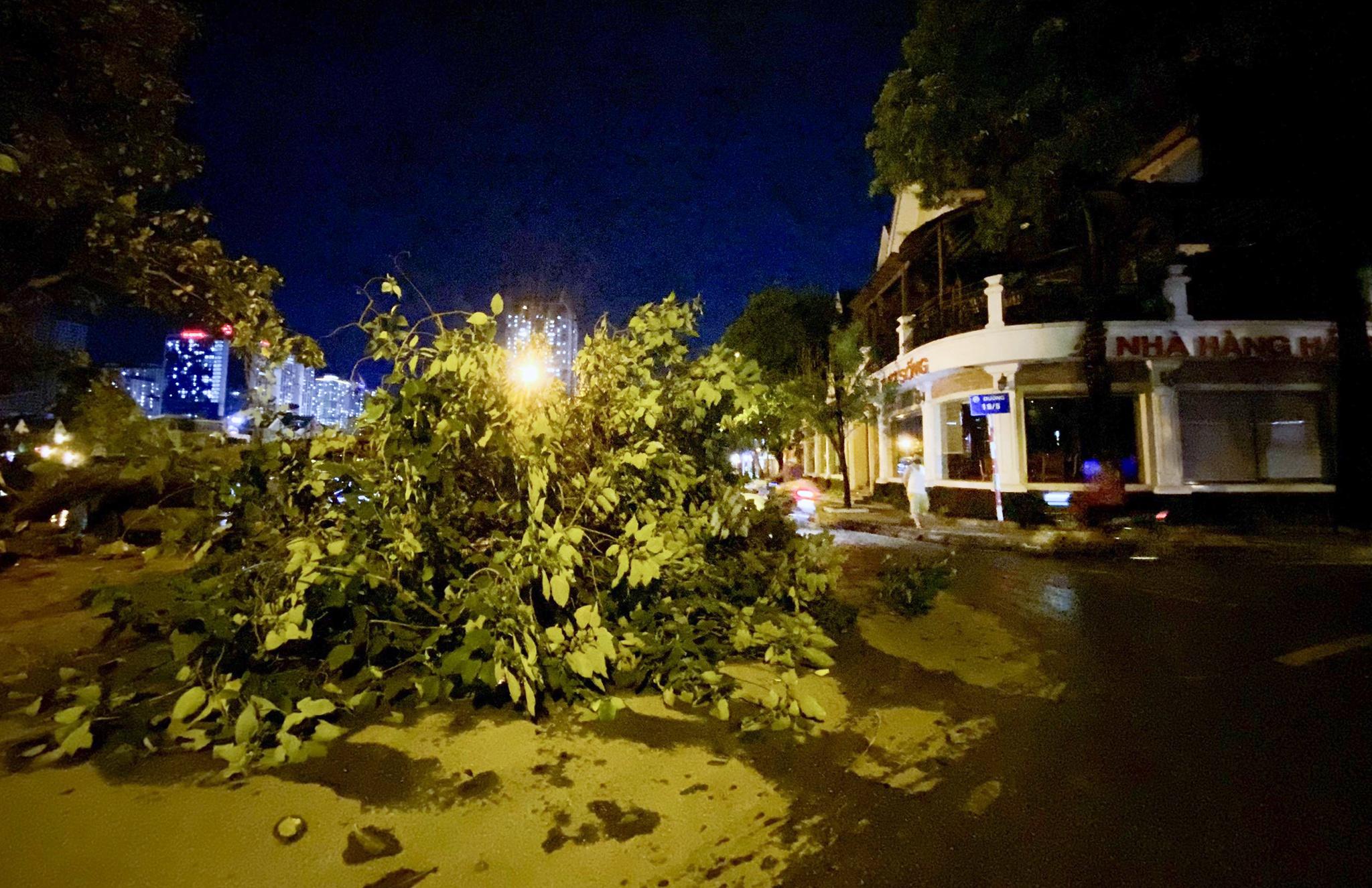 Bắt cá giữa đường sau mưa ngập ở Hà Nội - Ảnh 13.
