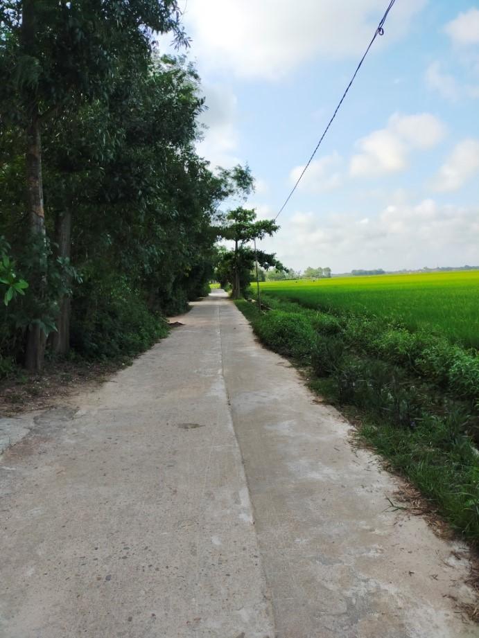 Kể chuyện làng: Ngan ngát mùi đường làng quê tôi - Ảnh 1.