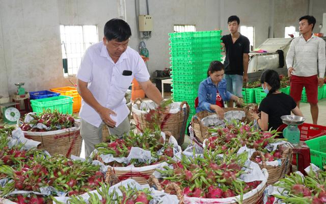 Xuất khẩu nhiều loại rau, quả trong 4 tháng đầu năm nay tăng trưởng mạnh dù bị ảnh hưởng nhiều bởi dịch bệnh Covid-19.