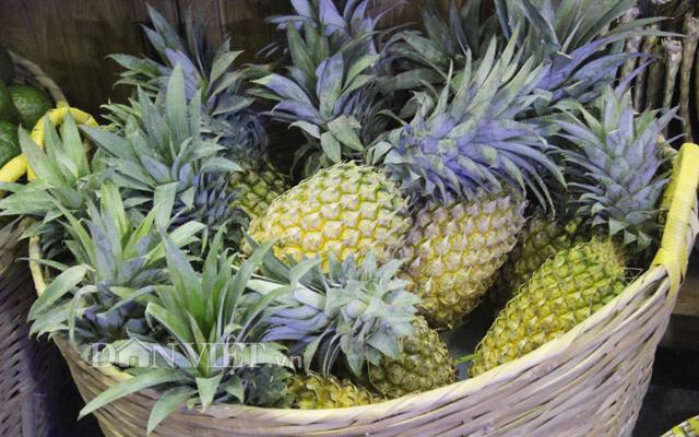 Nông dân trồng dứa vui mừng vì được mùa được giá