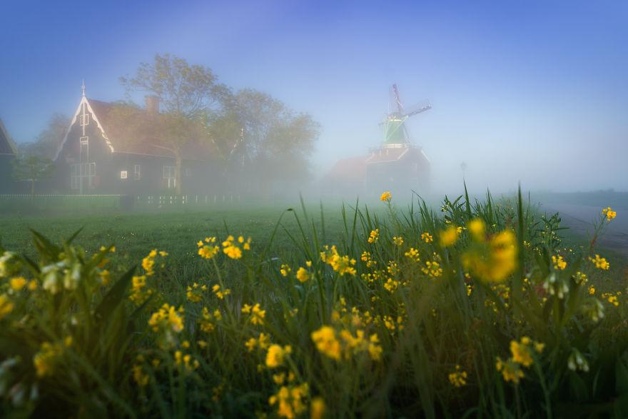 Làng cối xay gió ở Hà Lan chìm trong sương mù huyền ảo như cổ tích - Ảnh 11.