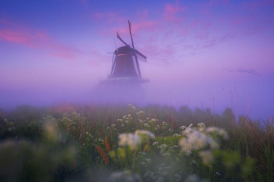 Làng cối xay gió ở Hà Lan chìm trong sương mù huyền ảo như cổ tích - Ảnh 1.
