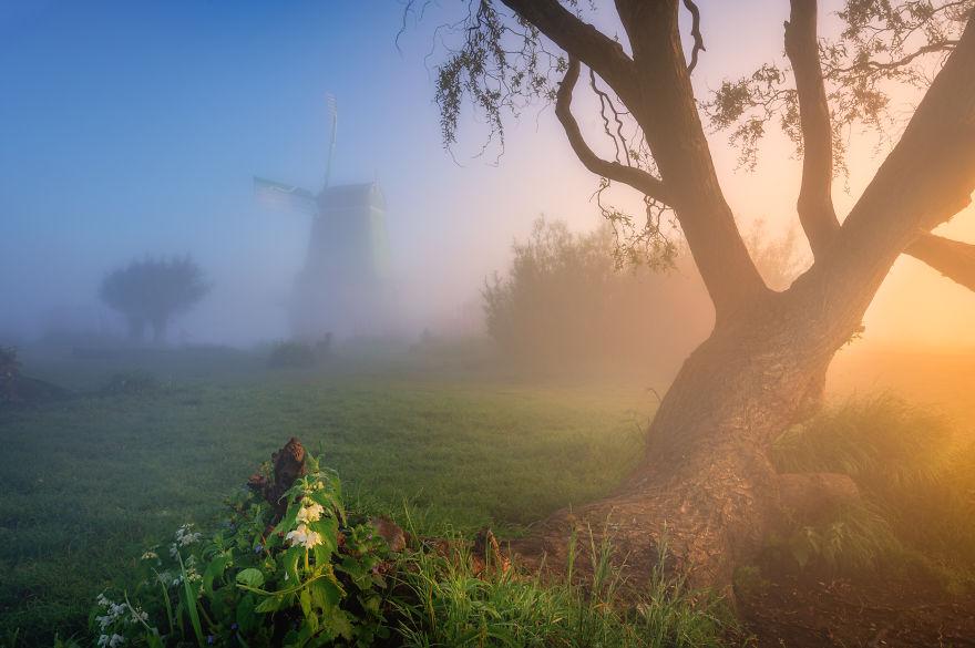 Làng cối xay gió ở Hà Lan chìm trong sương mù huyền ảo như cổ tích - Ảnh 8.
