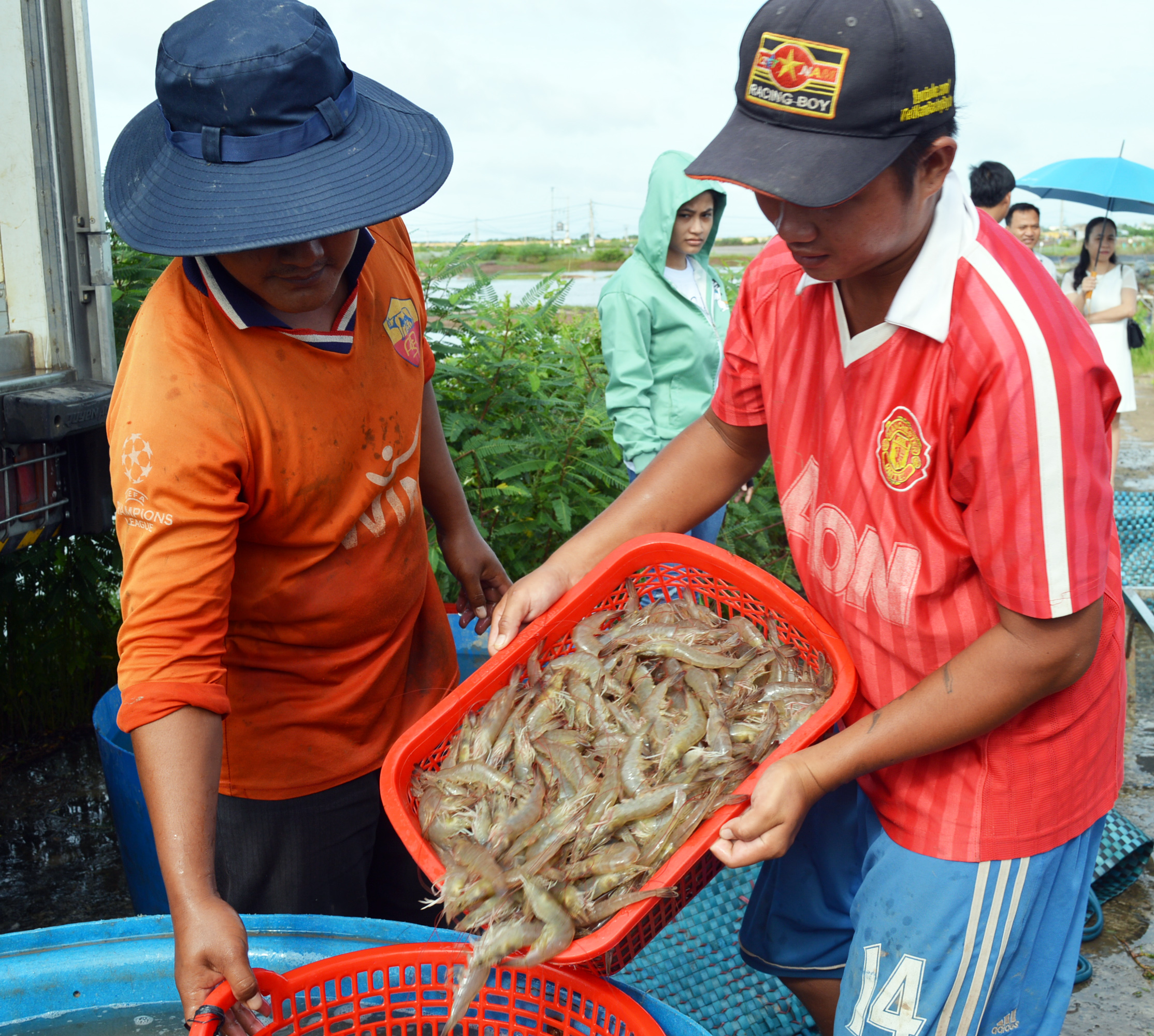 Mỹ - Nga săn hàng, Nhật Bản tăng mua, mới 4 tháng loài thủy sản này của Việt Nam đã thu tỷ USD - Ảnh 1.