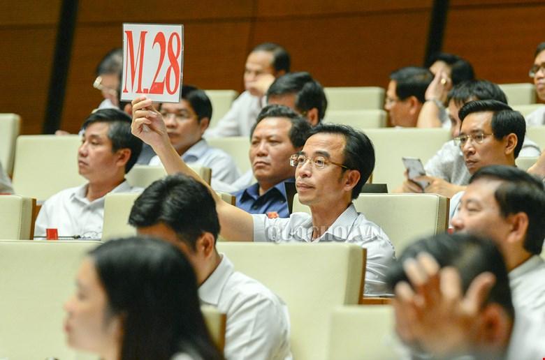 2 giáo sư tự ứng cử Đại biểu Quốc hội và Giám đốc Bệnh viện Bạch Mai cùng đơn vị bầu cử  - Ảnh 2.