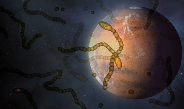 Vũ trụ có thể bị chi phối bởi sự tương tác của các vi sinh vật sống - Ảnh 2.