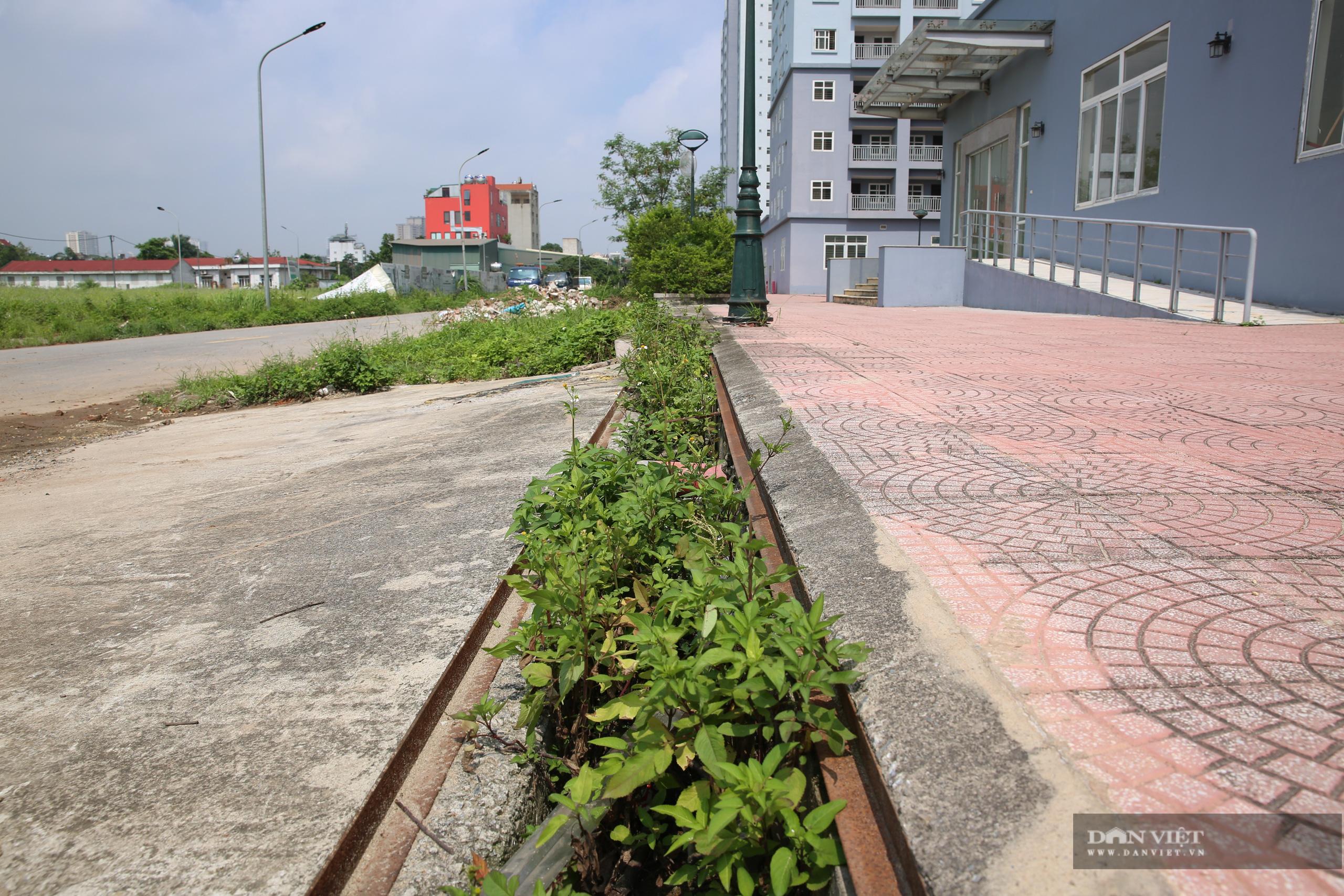 """Xót xa những khối nhà chung cư bỏ hoang """"phơi sương, hứng nắng"""" tại Hà Nội - Ảnh 8."""