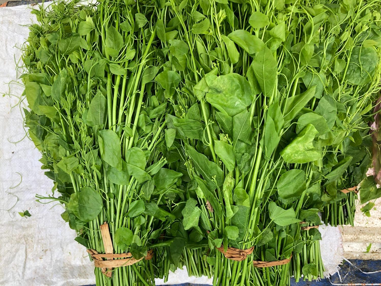 Đặc sản rau rừng ở Cao Bằng, đây thứ rau ăn ngọt như mì chính, kia thứ rau mầm mọc nhọn như lưỡi giáo - Ảnh 2.
