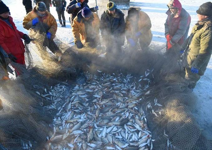 Phương pháp đánh cá cổ đại của người Mông Cổ có thể bắt được hàng ngàn con cá mỗi ngày  - Ảnh 3.