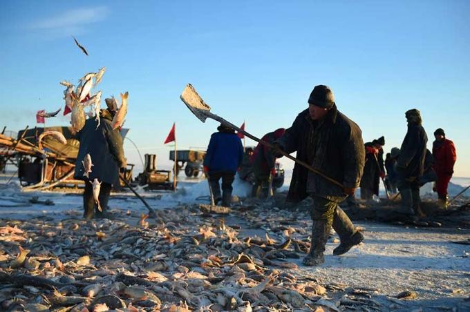 Phương pháp đánh cá cổ đại của người Mông Cổ có thể bắt được hàng ngàn con cá mỗi ngày  - Ảnh 4.