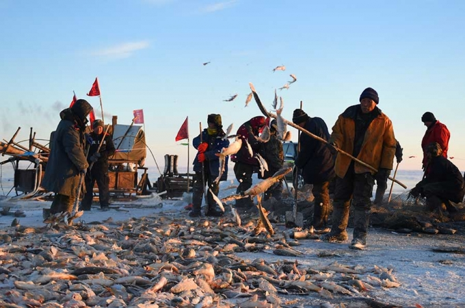 Phương pháp đánh cá cổ đại của người Mông Cổ có thể bắt được hàng ngàn con cá mỗi ngày  - Ảnh 5.