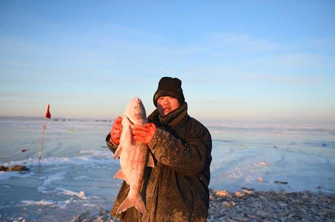 Phương pháp đánh cá cổ đại của người Mông Cổ có thể bắt được hàng ngàn con cá mỗi ngày  - Ảnh 6.