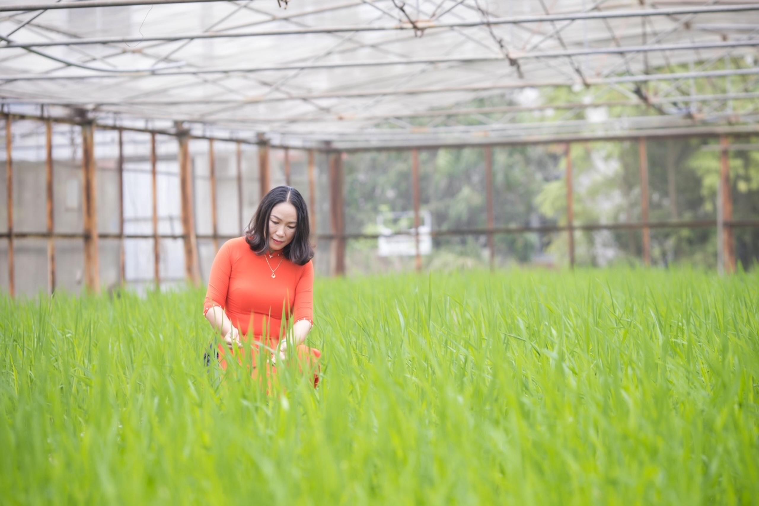 Chuyên gia nghiên cứu lúa lai muốn làm gì cho Hà Nội nếu được bầu làm đại biểu Quốc hội khóa XV? - Ảnh 2.