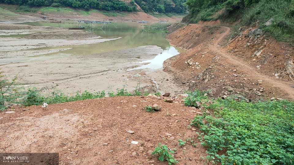 Sơn La: Nước sông Đà rút nhanh, người nuôi cá lồng ăn không ngon, ngủ không yên - Ảnh 3.