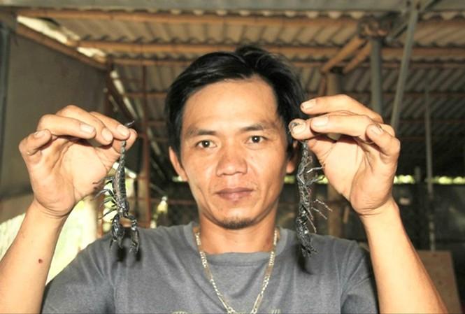 Quảng Trị: Khám phá trang trại nuôi bọ cạp đen la liệt, người yếu bóng vía không dám xem - Ảnh 1.