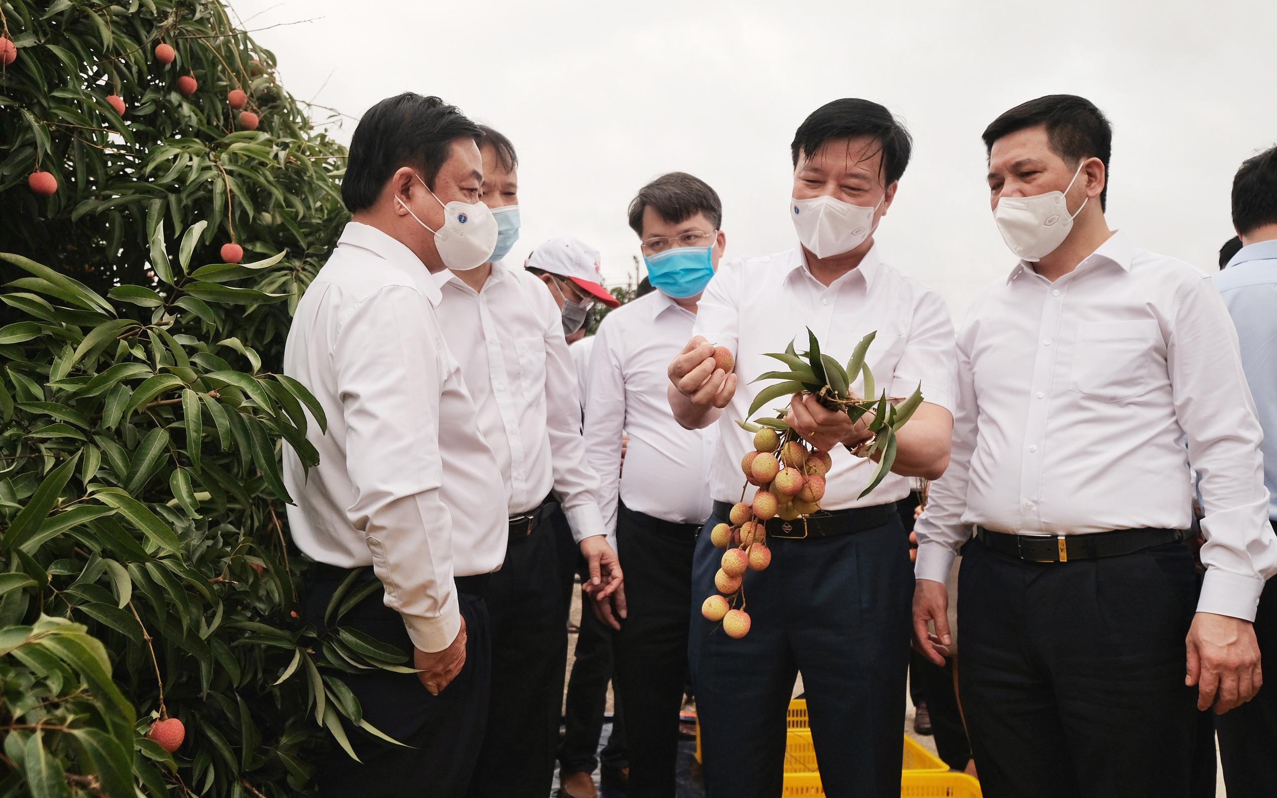 Mở vườn đưa quả tiến vua lên đường đi Nhật Bản, Mỹ, Bộ trưởng Bộ NNPTNT Lê Minh Hoan ấn tượng vì điều này