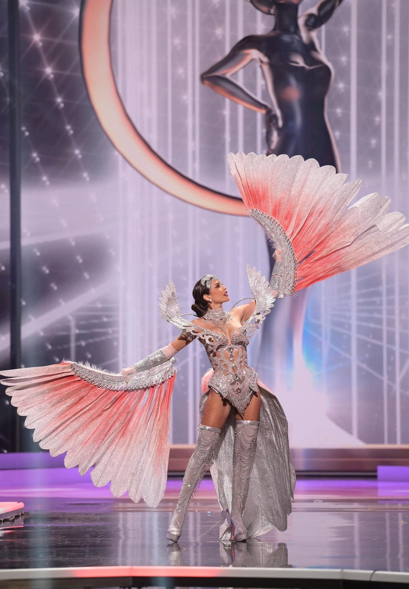 Á hậu gây nhiều tiếc nuối nhất tại Hoa hậu Hoàn vũ 2020 - Ảnh 5.
