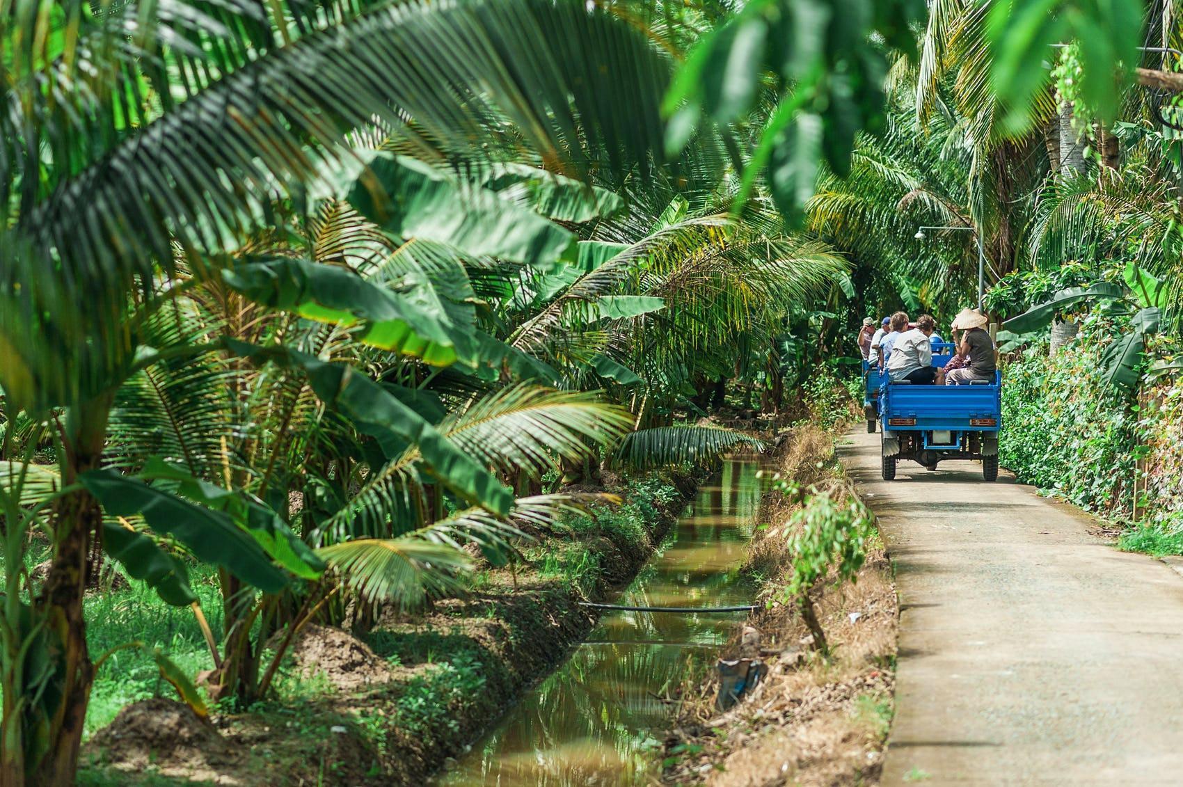 Báo quốc tế giới thiệu 7 cung đường check-in đẹp nhất Việt Nam - Ảnh 5.