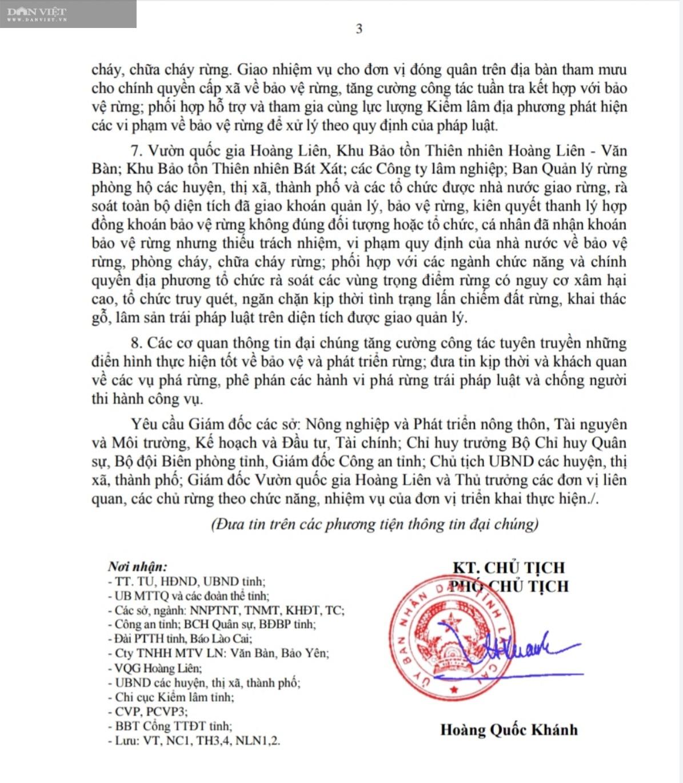 Lào Cai: Ban hành Chỉ thị về quản lý, bảo vệ và ngăn chặn tình trạng chặt, phá rừng… - Ảnh 5.