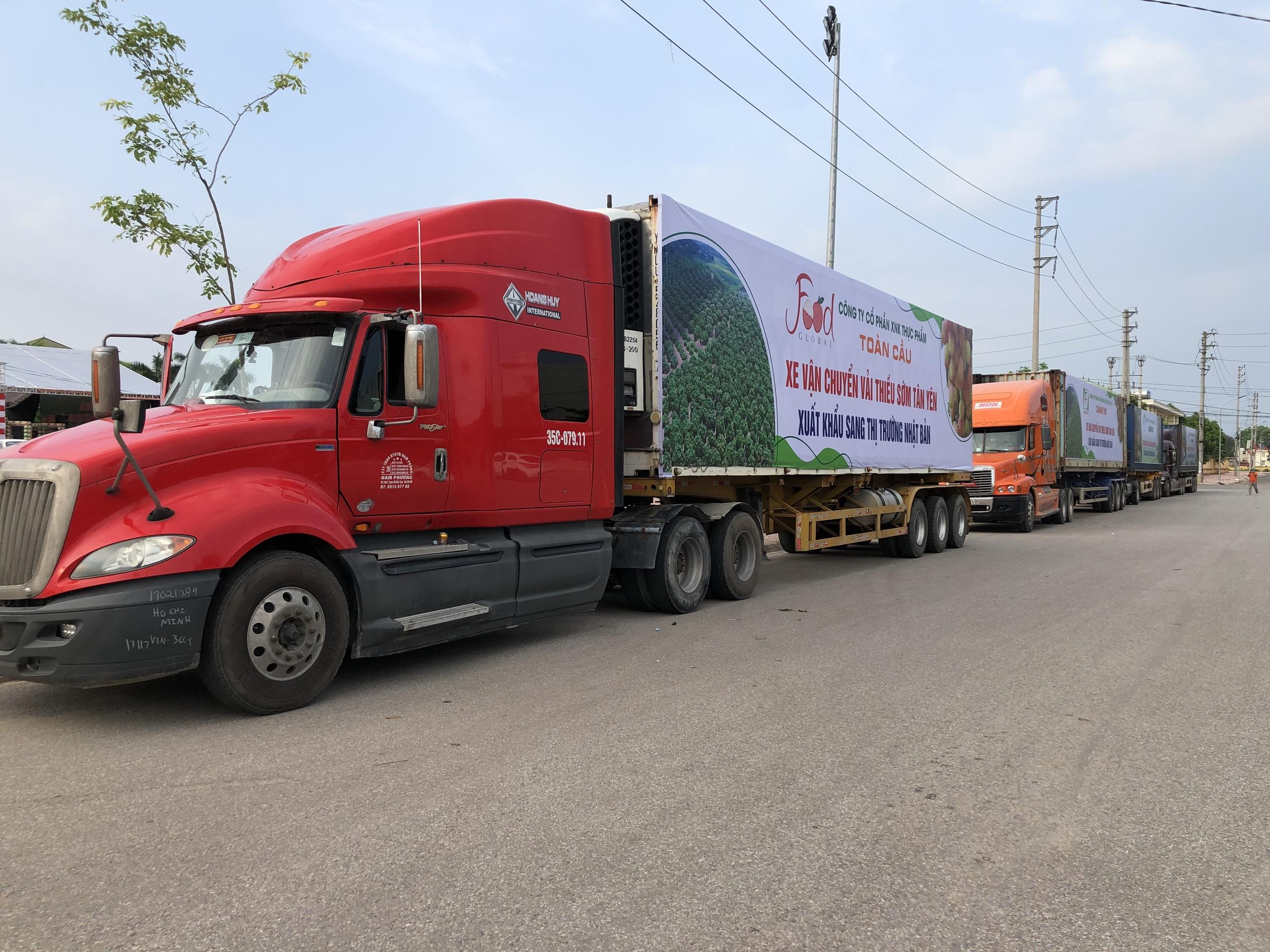 Bắc Giang muốn nhờ VNPT, Viettel gửi tin nhắn mời người dân mua vải thiều - Ảnh 1.