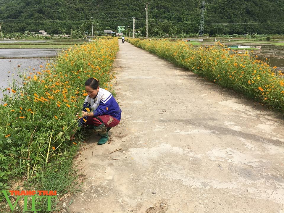 Hội viên nông dân Hòa Bình: Khẳng định vai trò nòng cốt trong XDNTM - Ảnh 1.