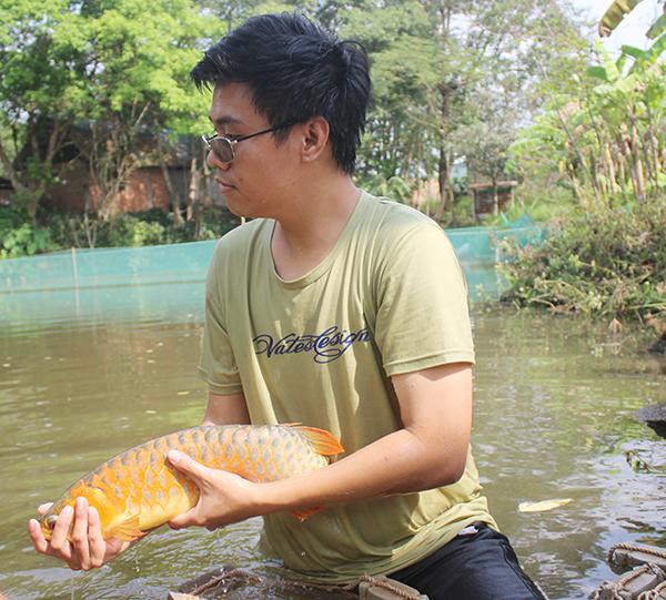 Chàng trai Đồng Nai nuôi cá quý hiếm trong ao làng, bất ngờ nhất là điều gì? - Ảnh 2.