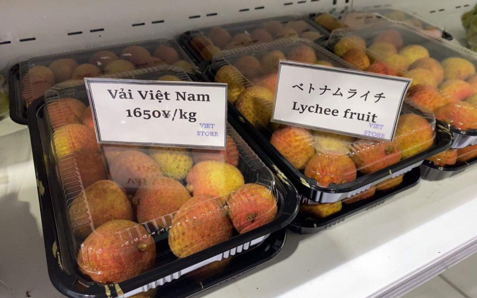 """Một loại trái cây của Việt Nam đến Nhật Bản, giá 350.000 đồng/kg vẫn cháy hàng, người Nhật khen """"ngon nhất thế giới"""""""
