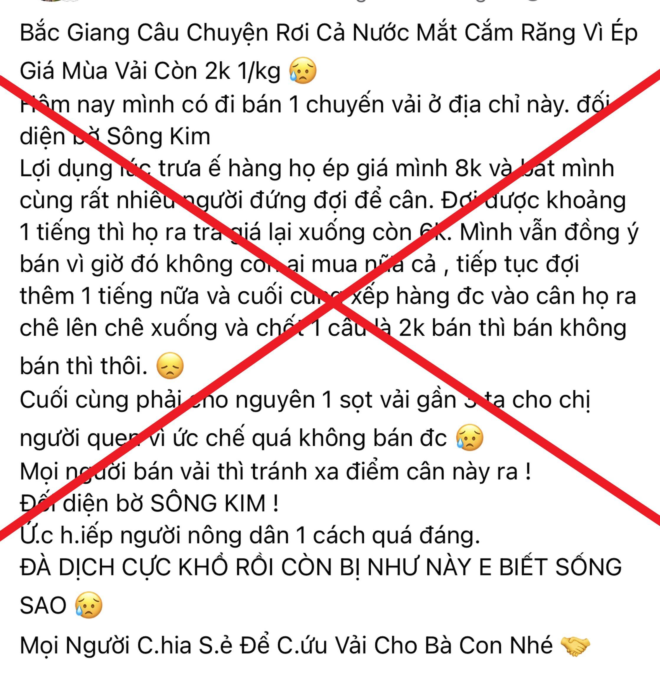 Bắc Giang: Vải thiều bị ép giá xuống 2.000 đồng/kg là không đúng sự thật - Ảnh 1.