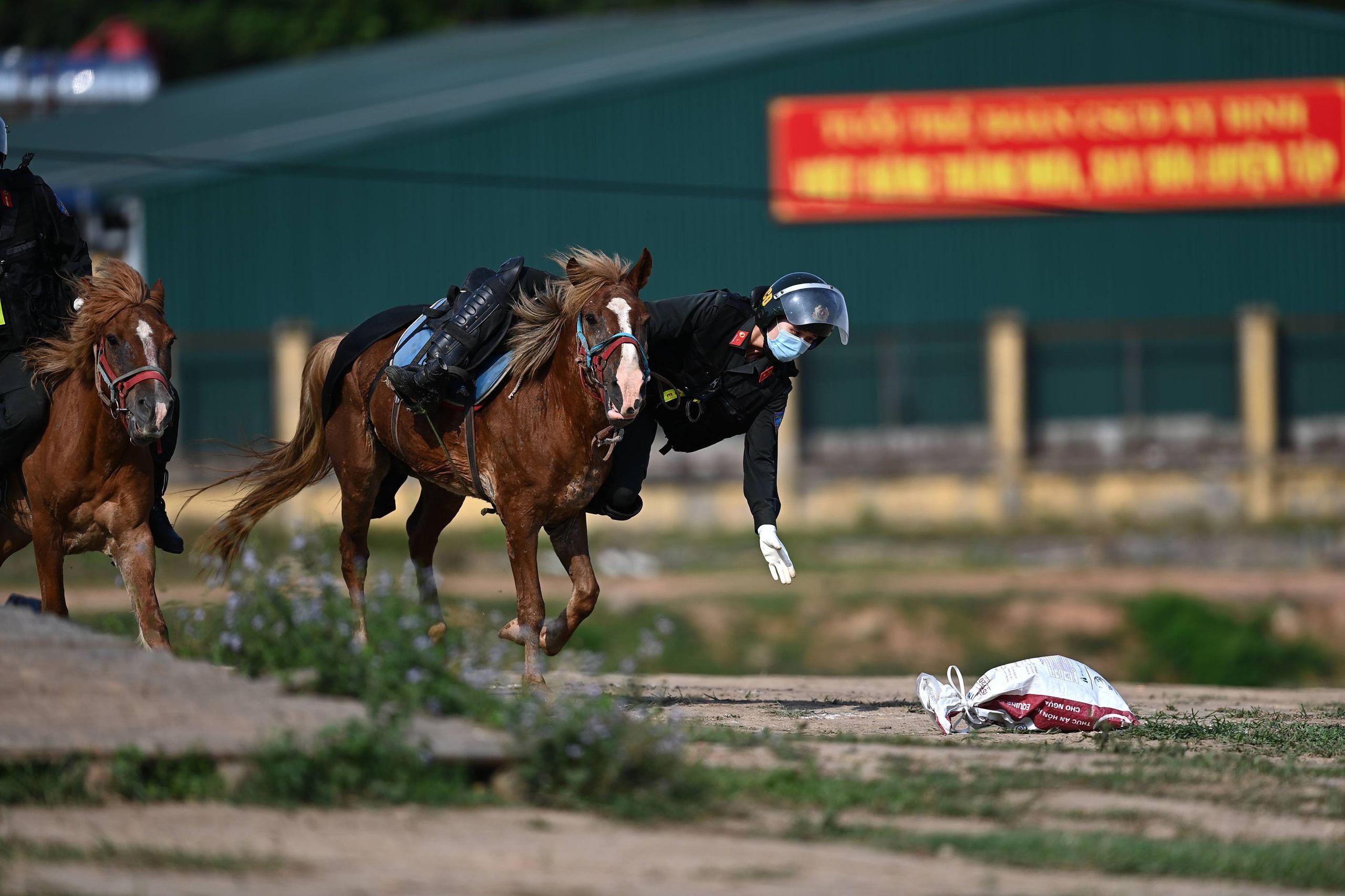 Cảnh sát Cơ động kỵ binh ngày một thuần thục kỹ năng nghiệp vụ - Ảnh 5.