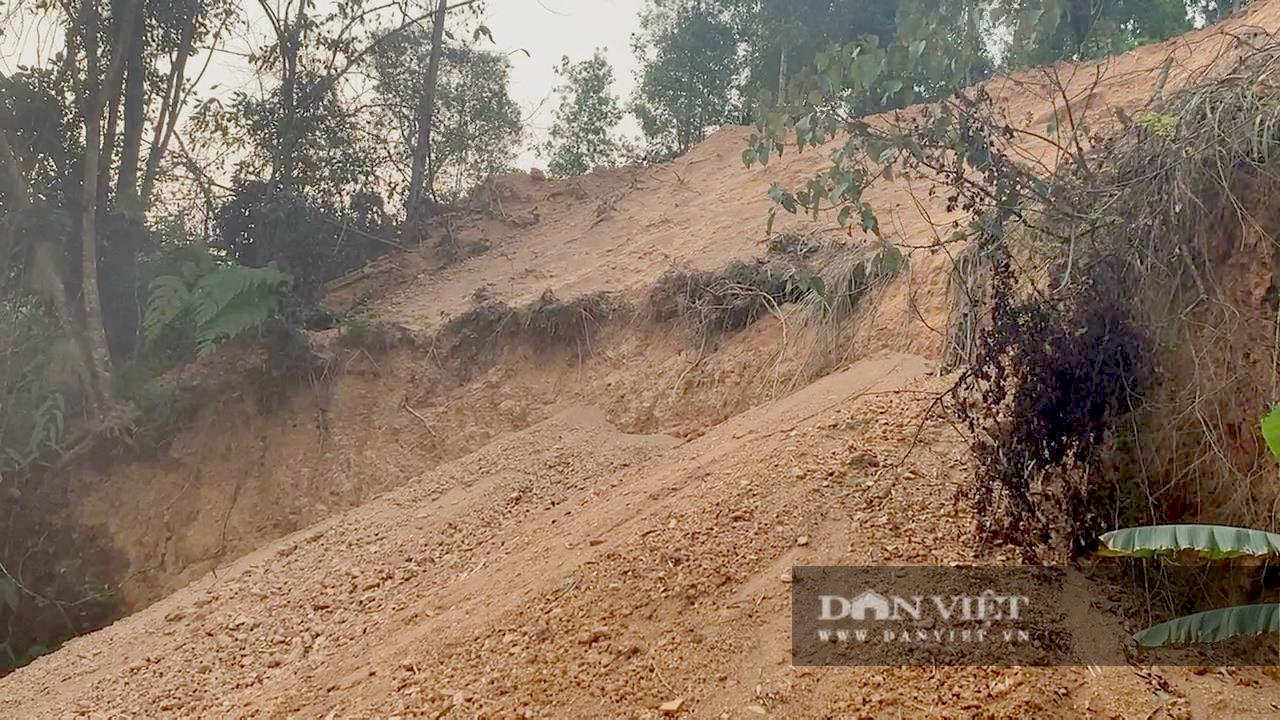 Bắc Kạn: Mở đường lên rừng, đổ đất lấp ruộng trái phép ngày cạnh UBND xã - Ảnh 4.