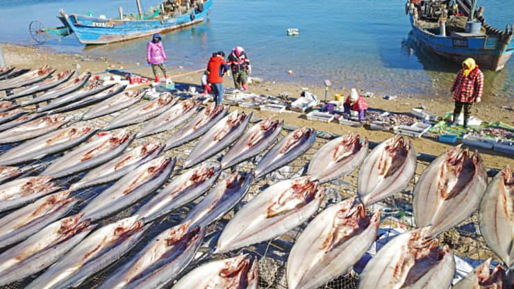 Mỹ bất ngờ cấm nhập khẩu hải sản từ một công ty đánh bắt Trung Quốc - Ảnh 1.