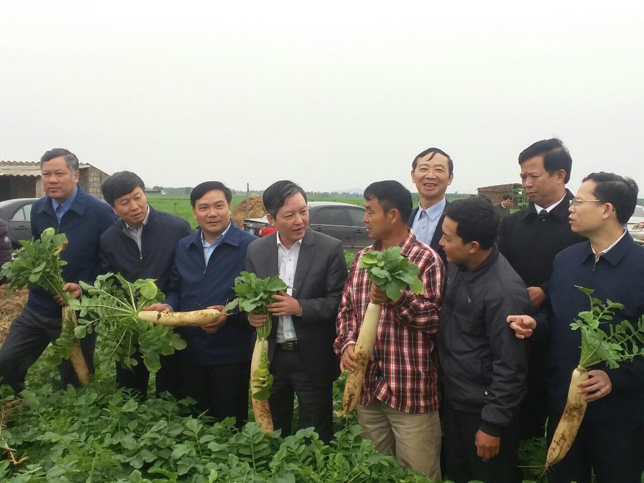 """Tân Chủ tịch Hội Nông dân Việt Nam Lương Quốc Đoàn: Hội cần thúc đẩy """"nhu cầu đổi mới"""" của nông dân - Ảnh 2."""