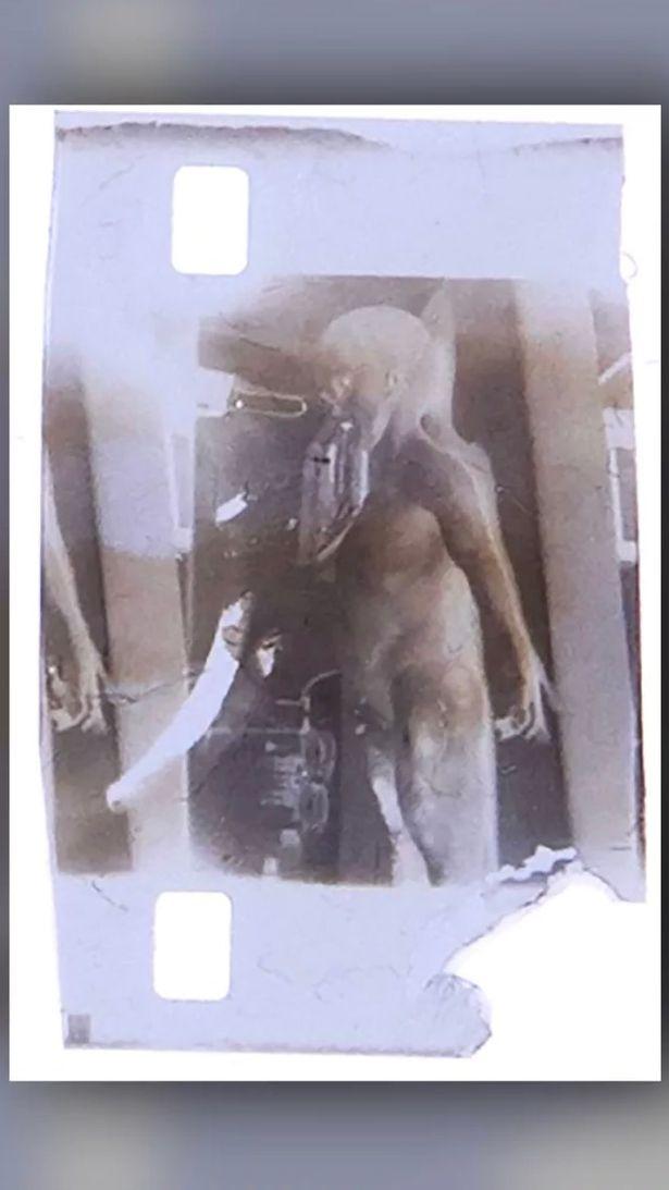 Bất ngờ số phận bức ảnh nổi tiếng về thi thể người ngoài hành tinh từ bộ phim tuyệt mật  - Ảnh 2.