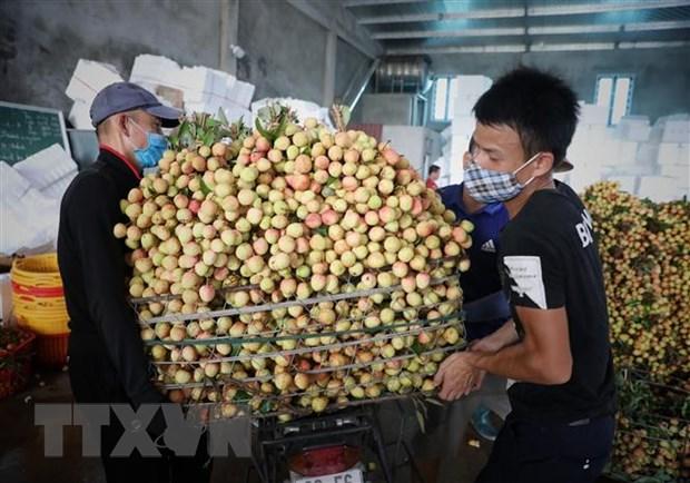 Thủ tướng chỉ đạo tháo gỡ khó khăn tiêu thụ nông sản cho Bắc Giang - Ảnh 1.