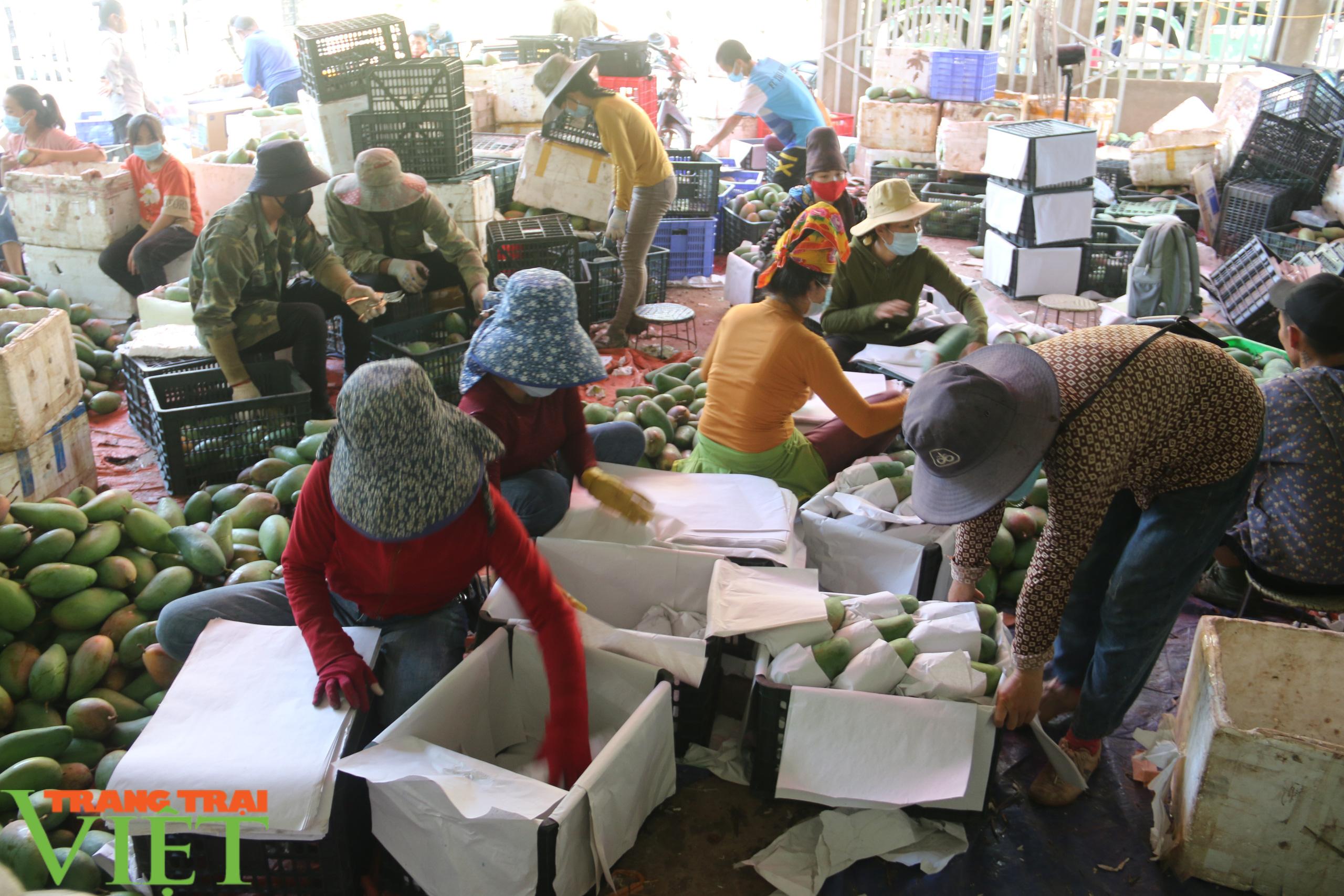 Sơn La: Đưa ra các giải pháp hỗ trợ sản phẩm nông sản vươn ra thị trường trong nước và quốc tế - Ảnh 6.