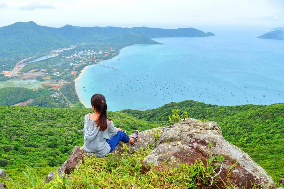 Huyện đảo nào có nhiều cây bàng cổ thụ di sản nhất cả nước? - Ảnh 7.