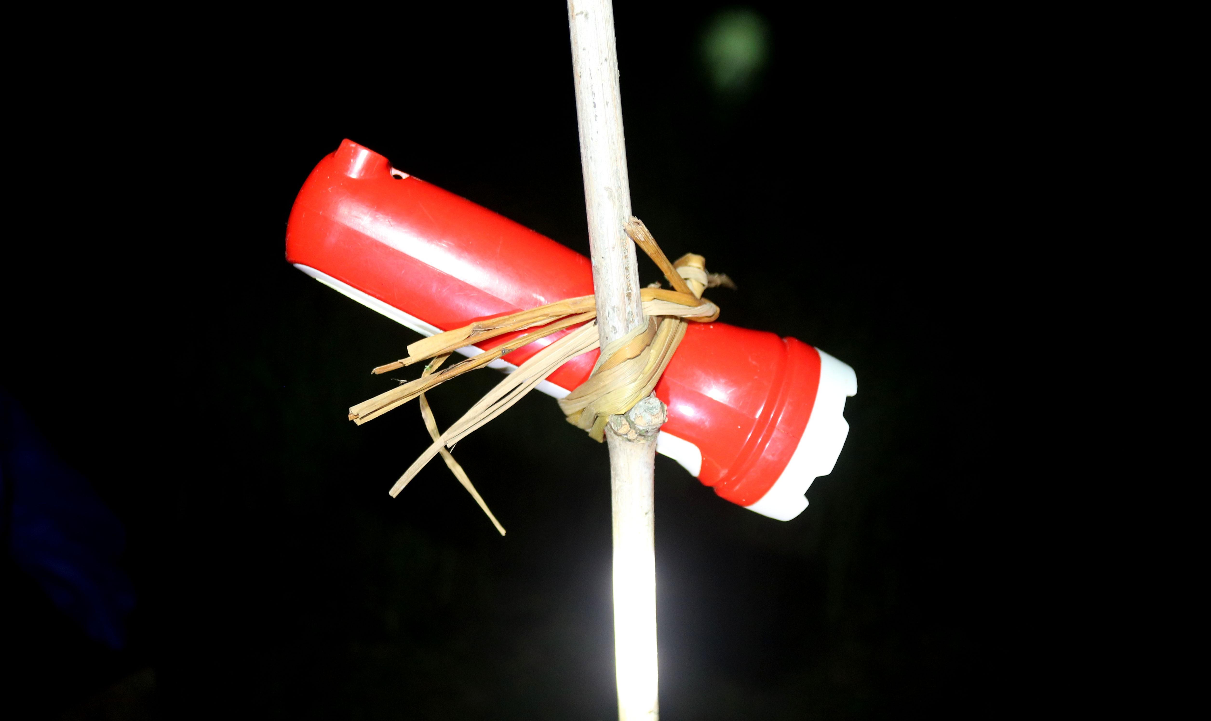 Tránh nắng nóng, người dân Nghệ An chong đèn nhổ mạ, cấy lúa đêm, ngoài ruộng vui hơn ở nhà - Ảnh 4.