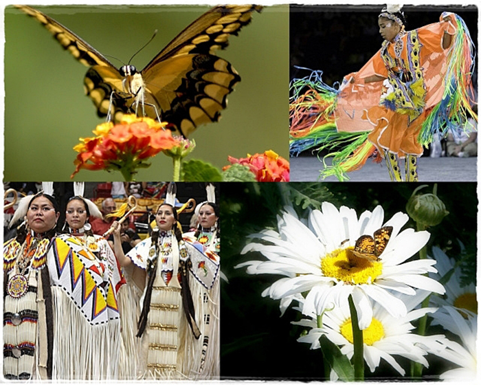 Lễ hội Pow Wow cuốn hút với những vũ điệu sắc màu độc lạ của thổ dân Cherokee - Ảnh 3.